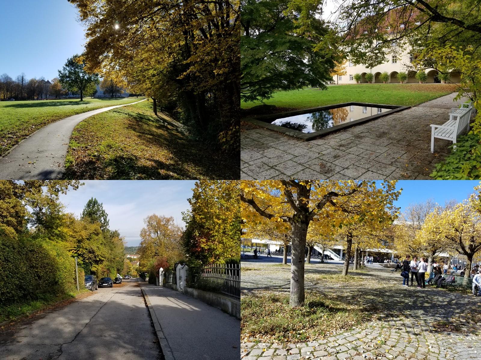 慕尼黑工业大学弗莱辛校区秋季风光