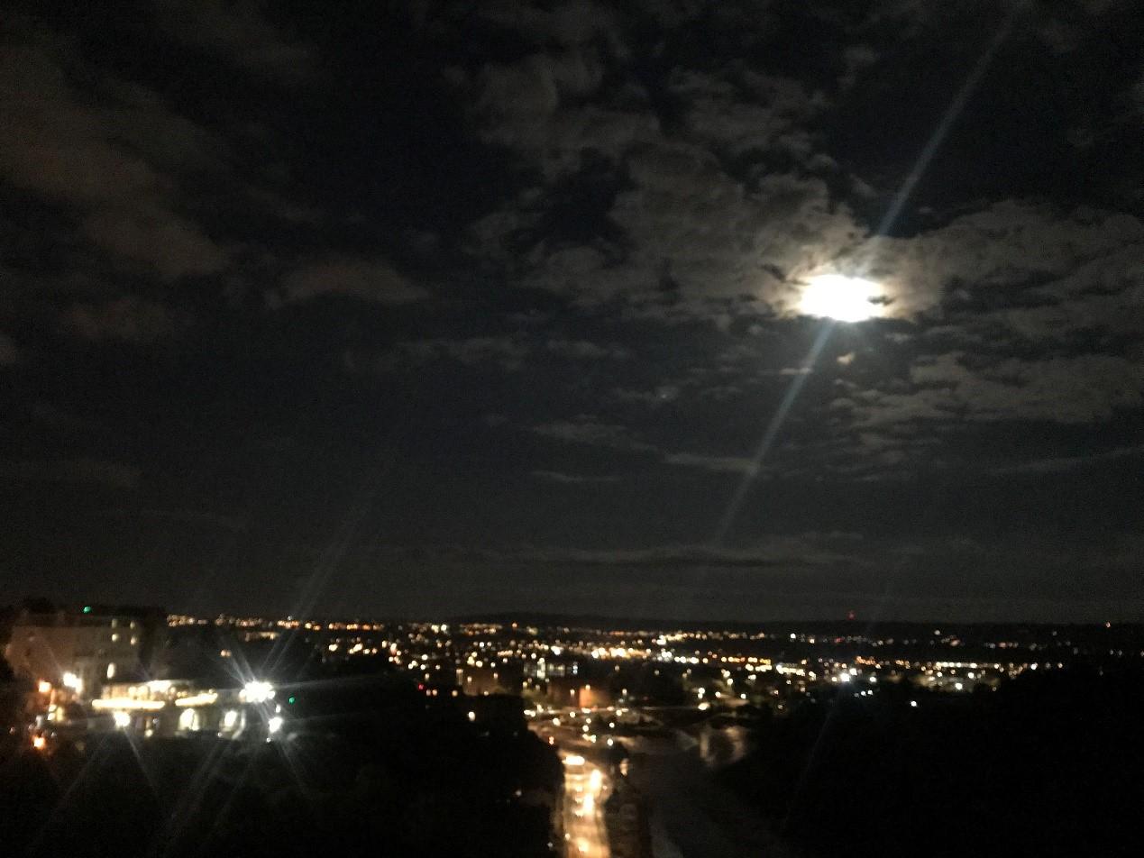 Bristol 5